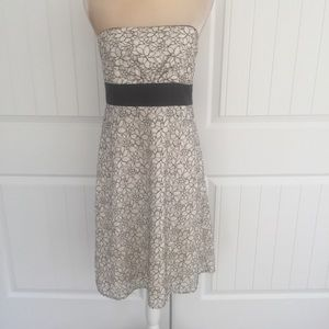 WHBM floral Lacey strapless dress size 8